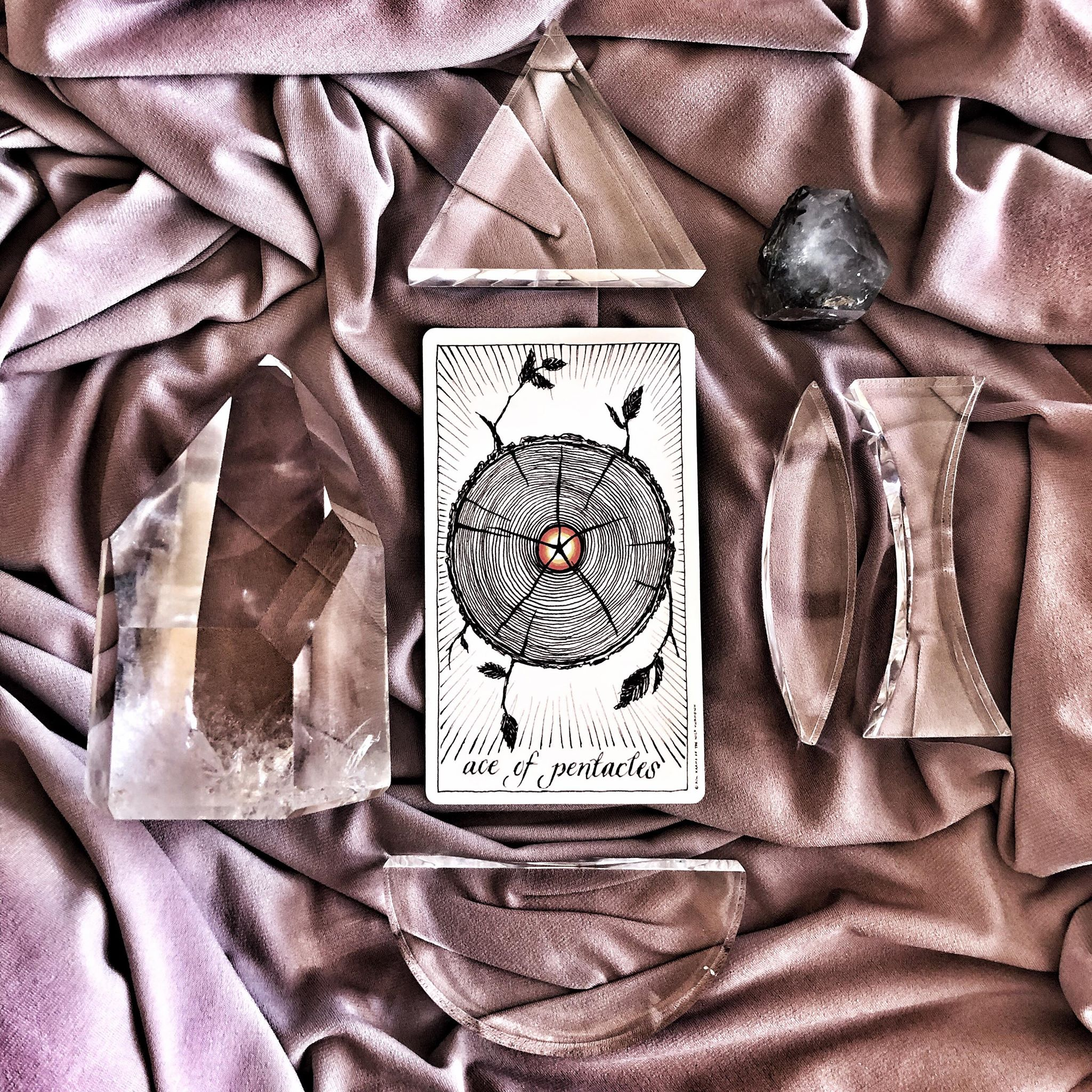 Ace of Pentacles, The Wild Unknown Tarot