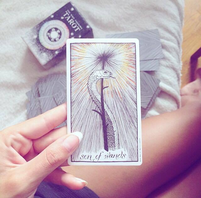 the wild unknown tarot son of wands meaning and interpretation