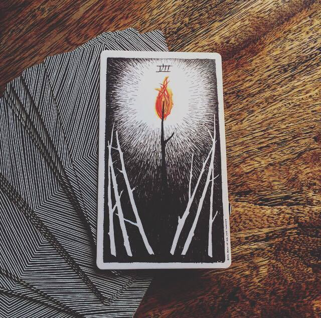 the wild unknown tarot seven 7 of wands meaning and interpretation