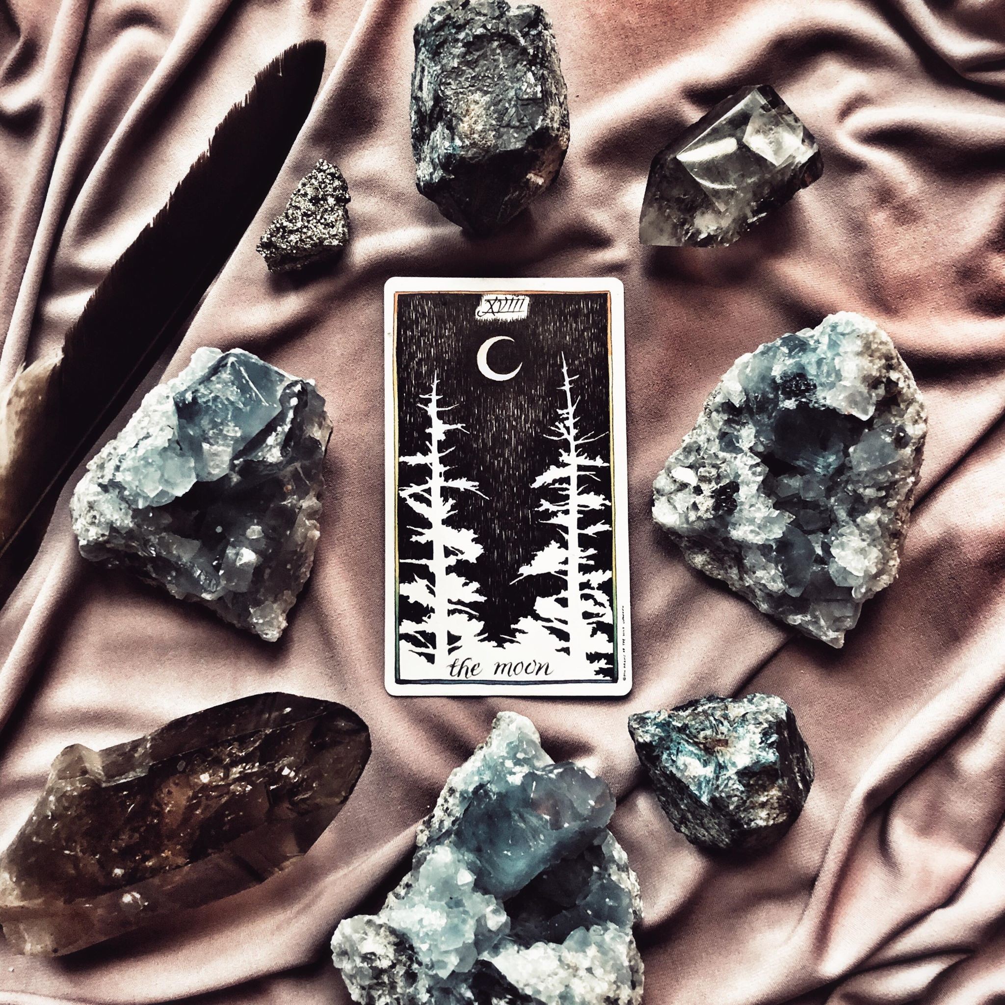 The Moon, The Wild Unknown Tarot
