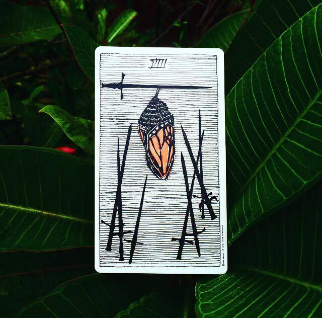 Eight of Swords The Wild Unknown Tarot