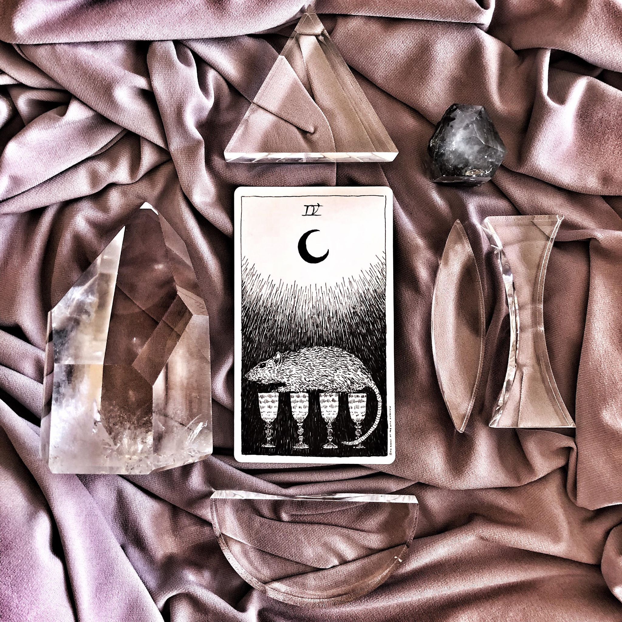 Four of Cups, The Wild Unknown Tarot