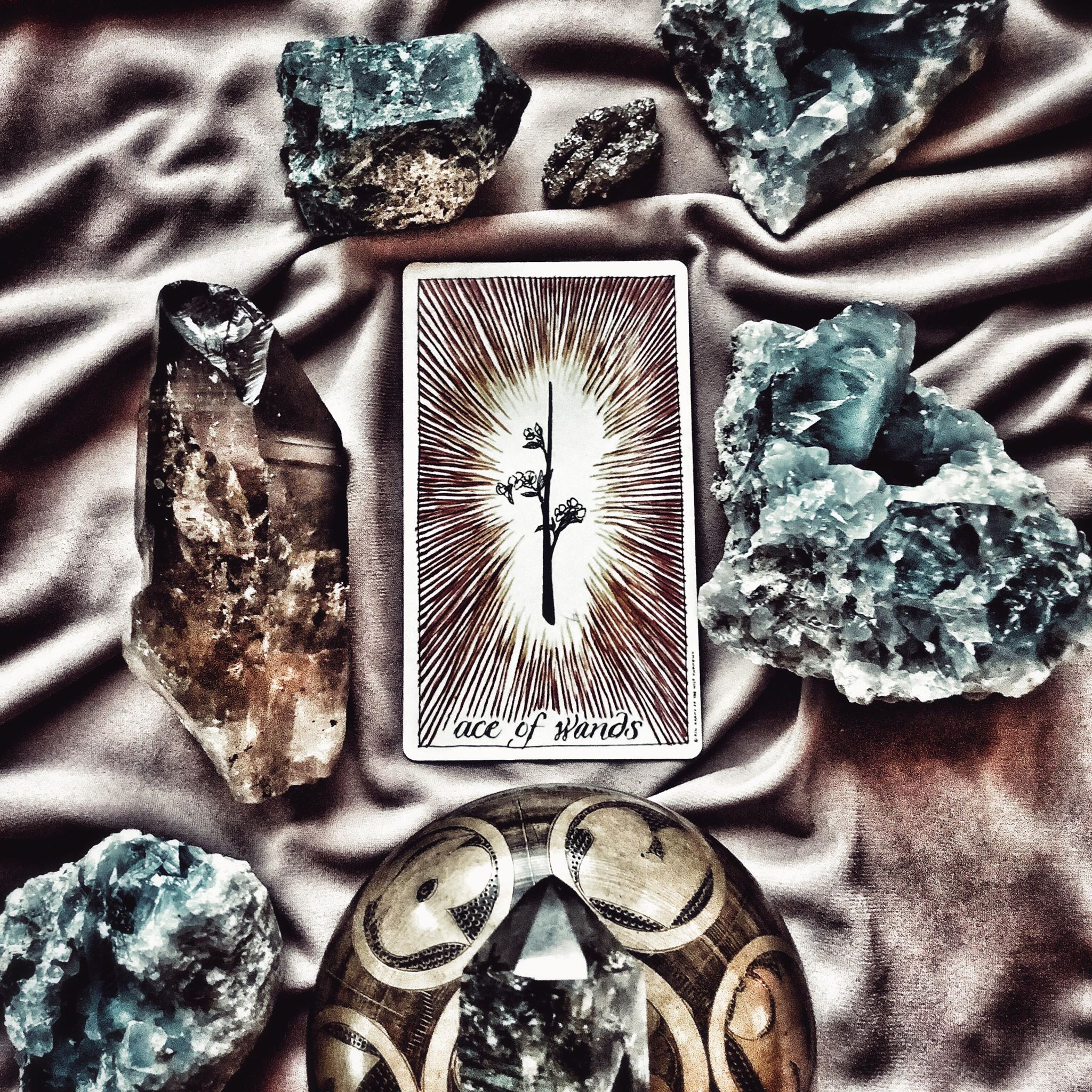 Ace of Wands, The Wild Unknown Tarot